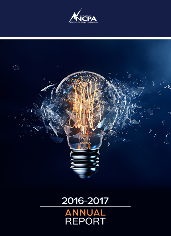 Annual_Report_WebCover